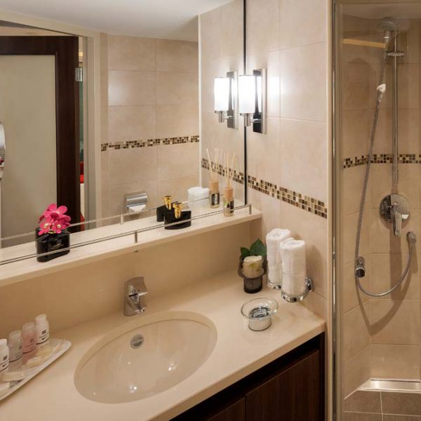 hotelship-william-shakespeare-bathroom